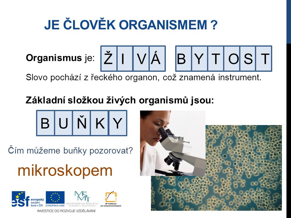 mikroskopem Ž I V Á B Y T O S T B U Ň K Y Je člověk organismem