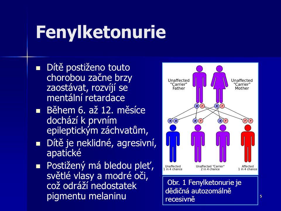 Fenylketonurie Dítě postiženo touto chorobou začne brzy zaostávat, rozvíjí se mentální retardace.