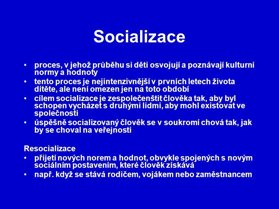 Socializace proces, v jehož průběhu si děti osvojují a poznávají kulturní normy a hodnoty.