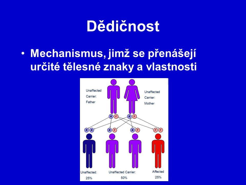 Dědičnost Mechanismus, jimž se přenášejí určité tělesné znaky a vlastnosti