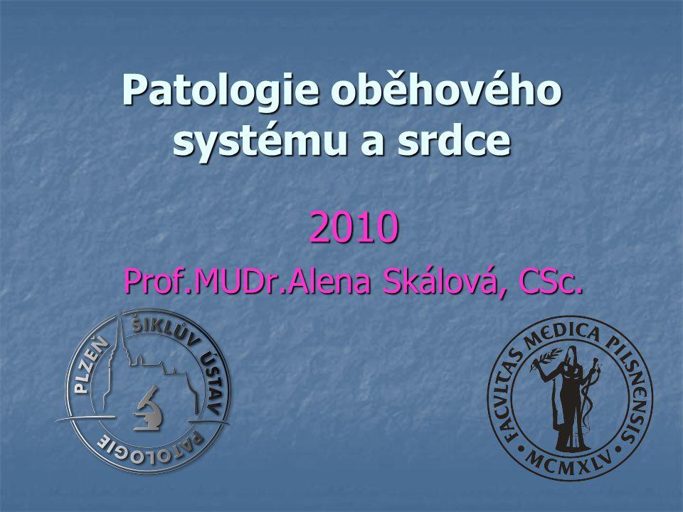 Patologie oběhového systému a srdce