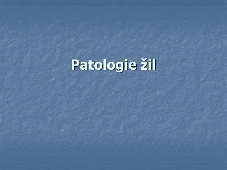 Patologie žil
