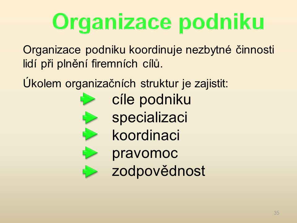 Organizace podniku specializaci koordinaci pravomoc zodpovědnost