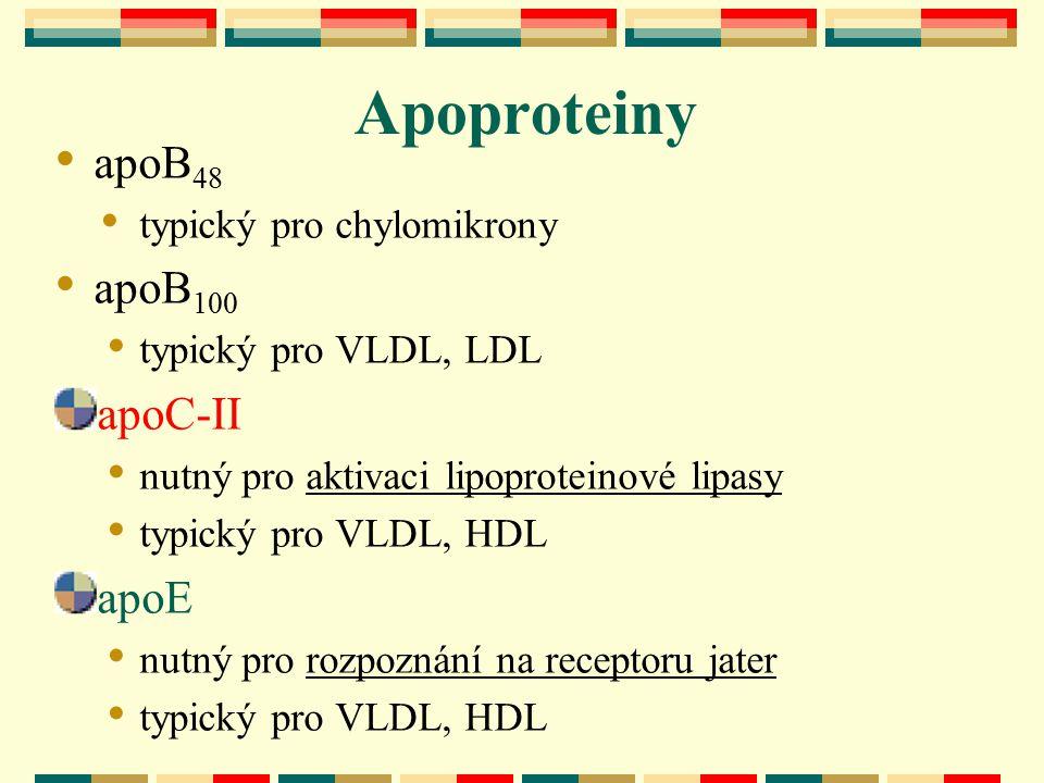 Apoproteiny apoB48 apoB100 apoC-II apoE typický pro chylomikrony