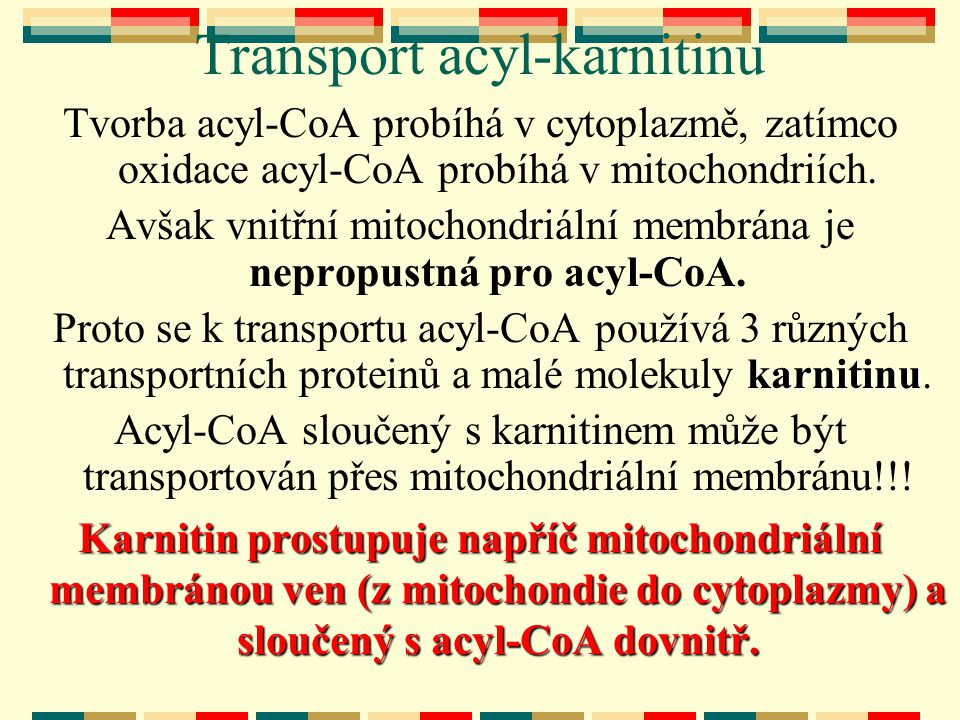 Transport acyl-karnitinu
