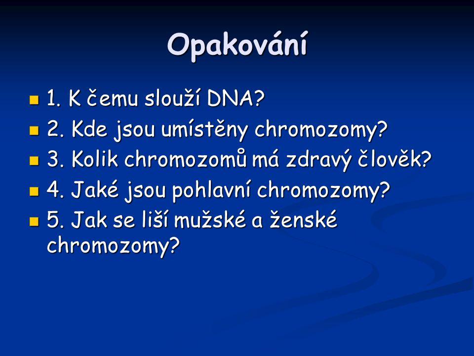 Opakování 1. K čemu slouží DNA 2. Kde jsou umístěny chromozomy