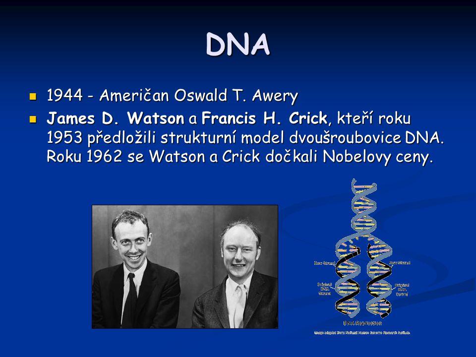 DNA 1944 - Američan Oswald T. Awery