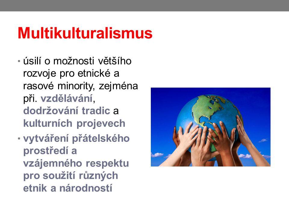Multikulturalismus úsilí o možnosti většího rozvoje pro etnické a rasové minority, zejména při. vzdělávání, dodržování tradic a kulturních projevech.