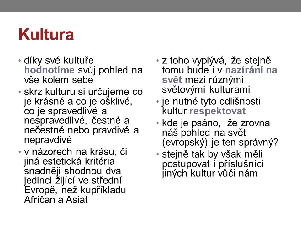 Kultura díky své kultuře hodnotíme svůj pohled na vše kolem sebe