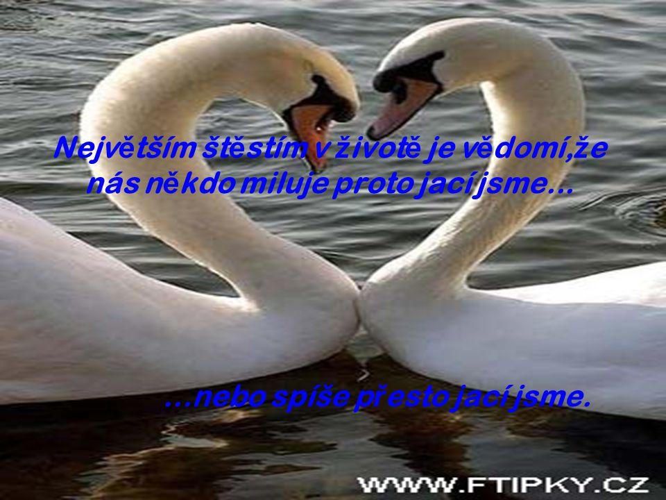 Největším štěstím v životě je vědomí,že nás někdo miluje proto jací jsme...