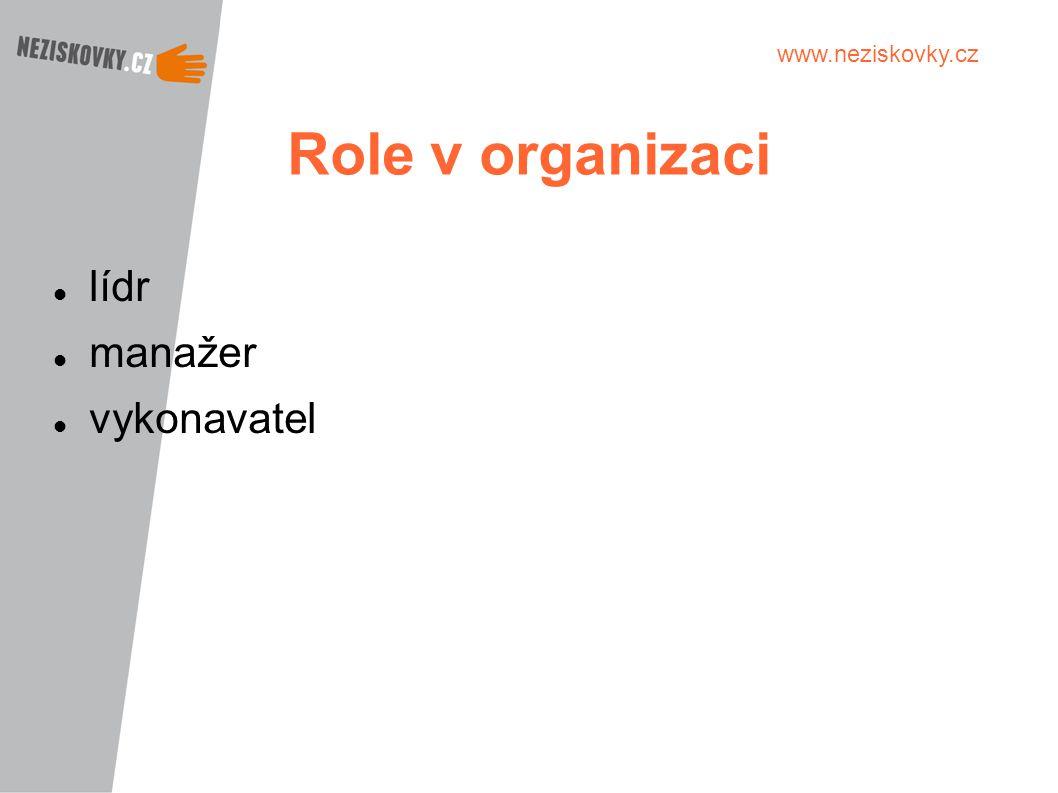 Role v organizaci lídr manažer vykonavatel