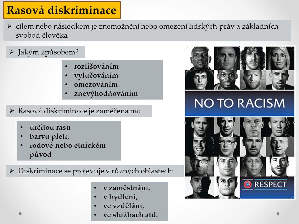 Rasová diskriminace cílem nebo následkem je znemožnění nebo omezení lidských práv a základních svobod člověka.