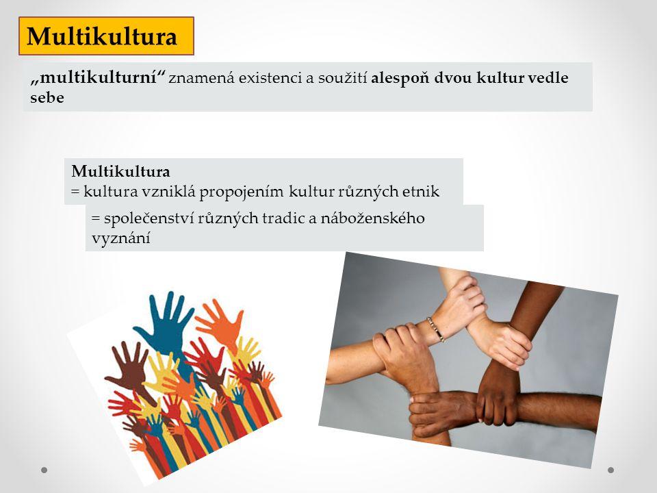 """Multikultura """"multikulturní znamená existenci a soužití alespoň dvou kultur vedle sebe. Multikultura."""