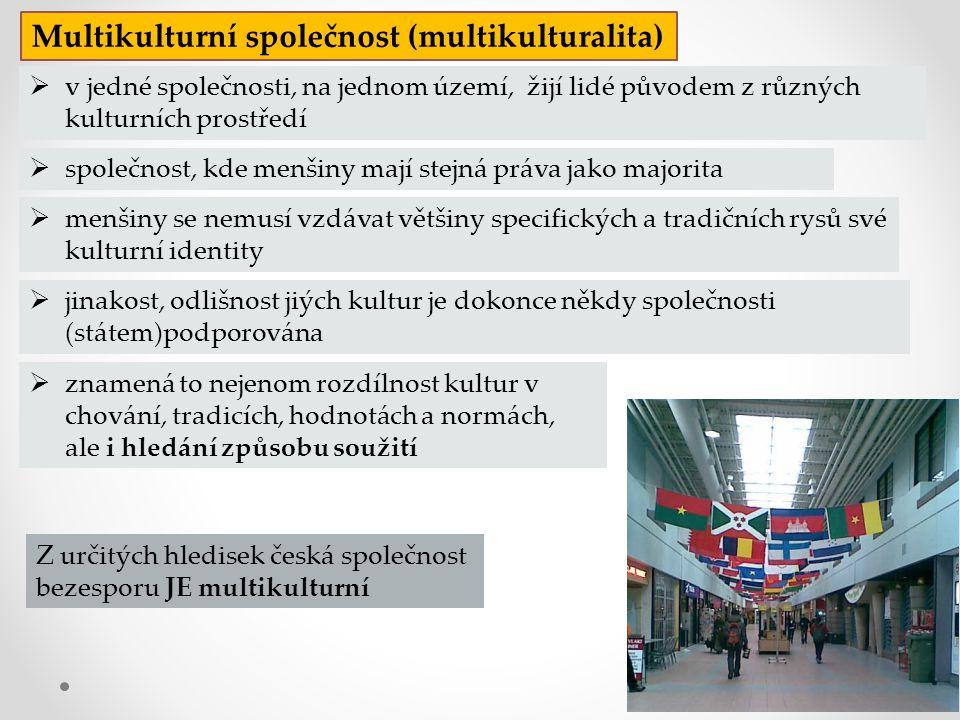 Multikulturní společnost (multikulturalita)