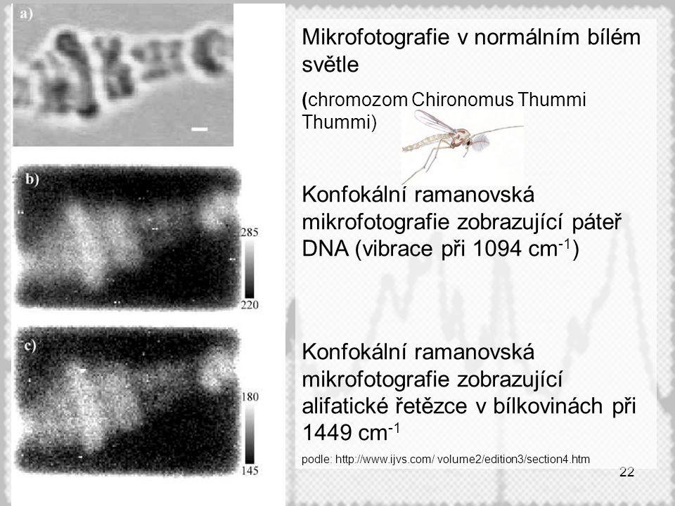 Mikrofotografie v normálním bílém světle