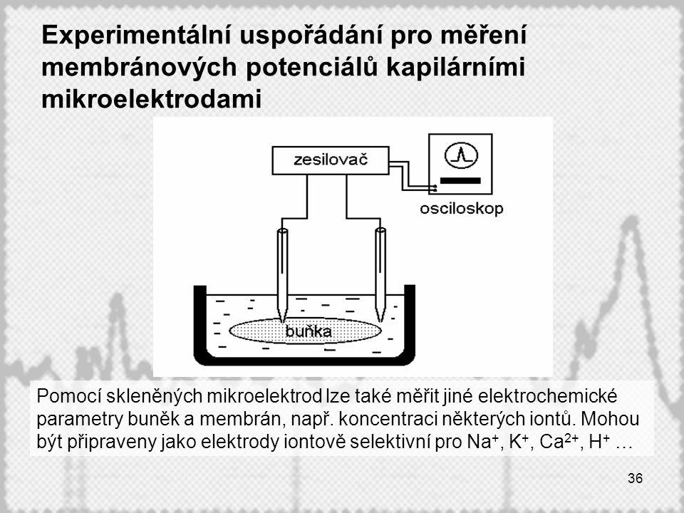 Experimentální uspořádání pro měření membránových potenciálů kapilárními mikroelektrodami