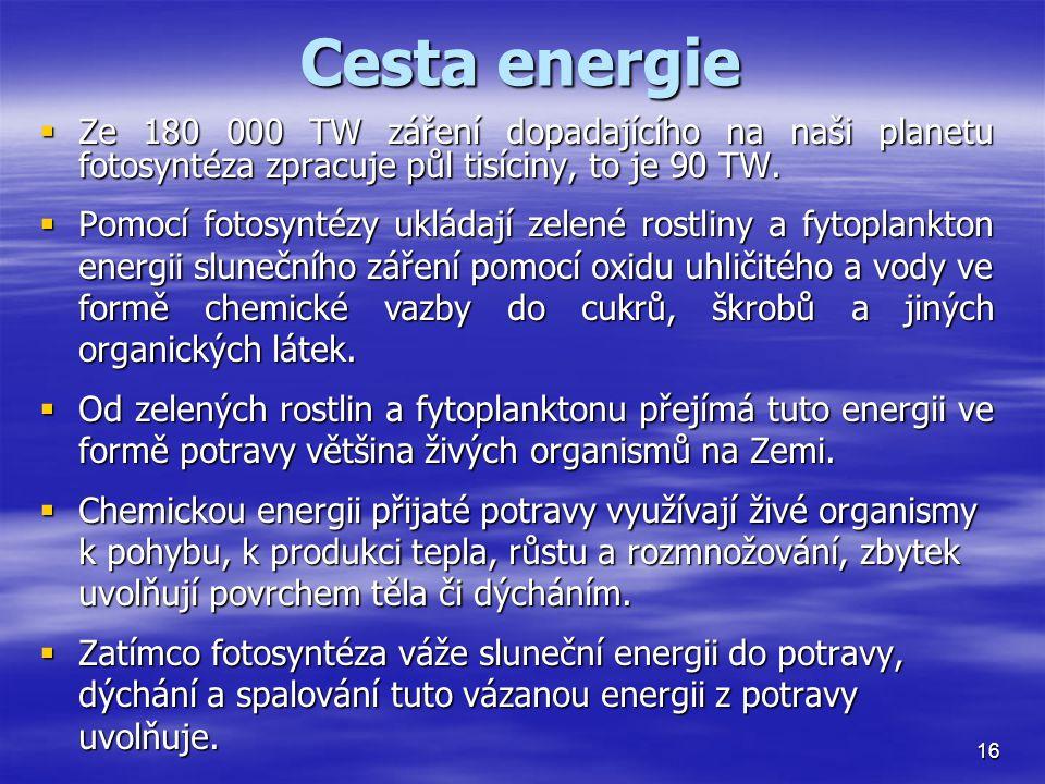 Cesta energie Ze 180 000 TW záření dopadajícího na naši planetu fotosyntéza zpracuje půl tisíciny, to je 90 TW.