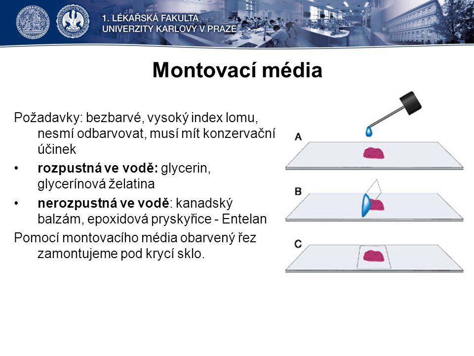 Montovací média Požadavky: bezbarvé, vysoký index lomu, nesmí odbarvovat, musí mít konzervační účinek.