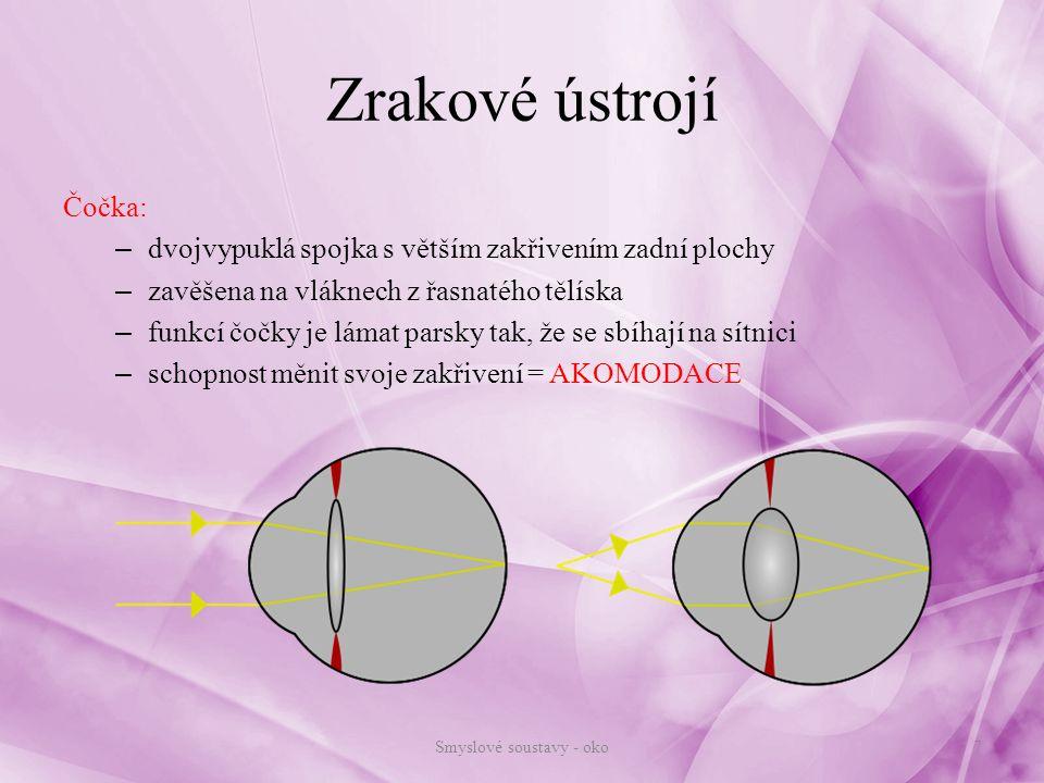Smyslové soustavy - oko
