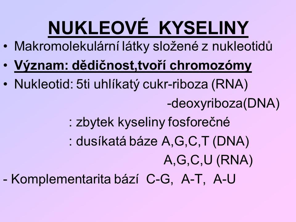 NUKLEOVÉ KYSELINY Makromolekulární látky složené z nukleotidů