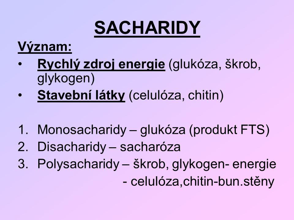 SACHARIDY Význam: Rychlý zdroj energie (glukóza, škrob, glykogen)