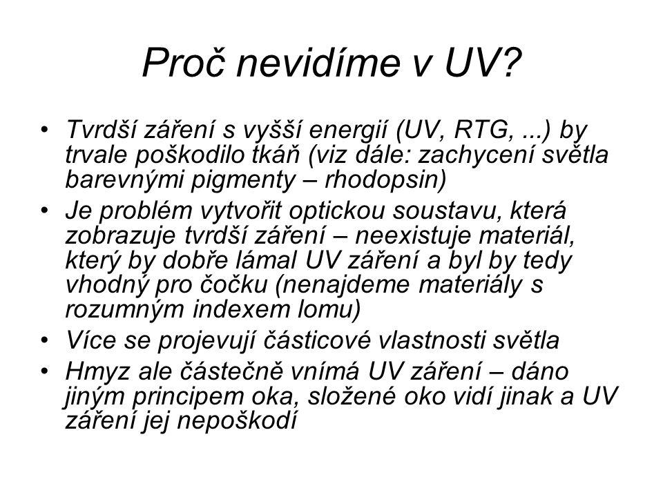 Proč nevidíme v UV Tvrdší záření s vyšší energií (UV, RTG, ...) by trvale poškodilo tkáň (viz dále: zachycení světla barevnými pigmenty – rhodopsin)