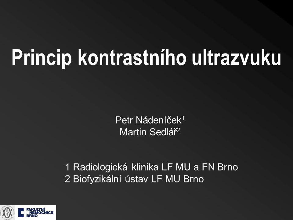 Princip kontrastního ultrazvuku