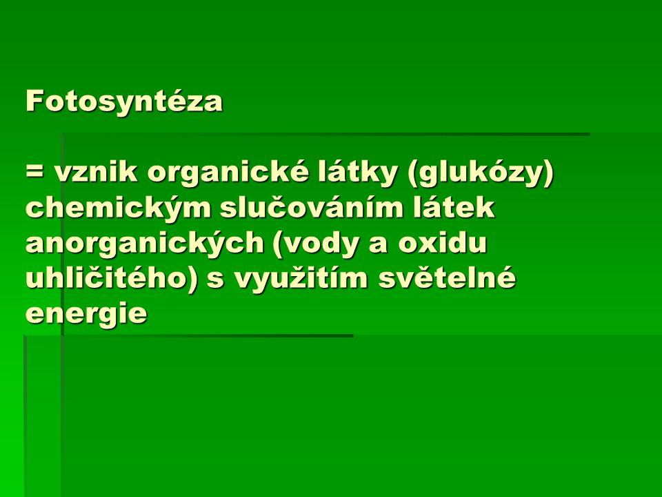 Fotosyntéza = vznik organické látky (glukózy) chemickým slučováním látek anorganických (vody a oxidu uhličitého) s využitím světelné energie