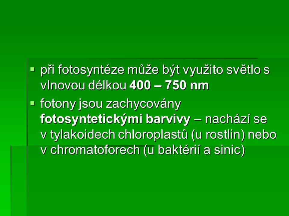 při fotosyntéze může být využito světlo s vlnovou délkou 400 – 750 nm