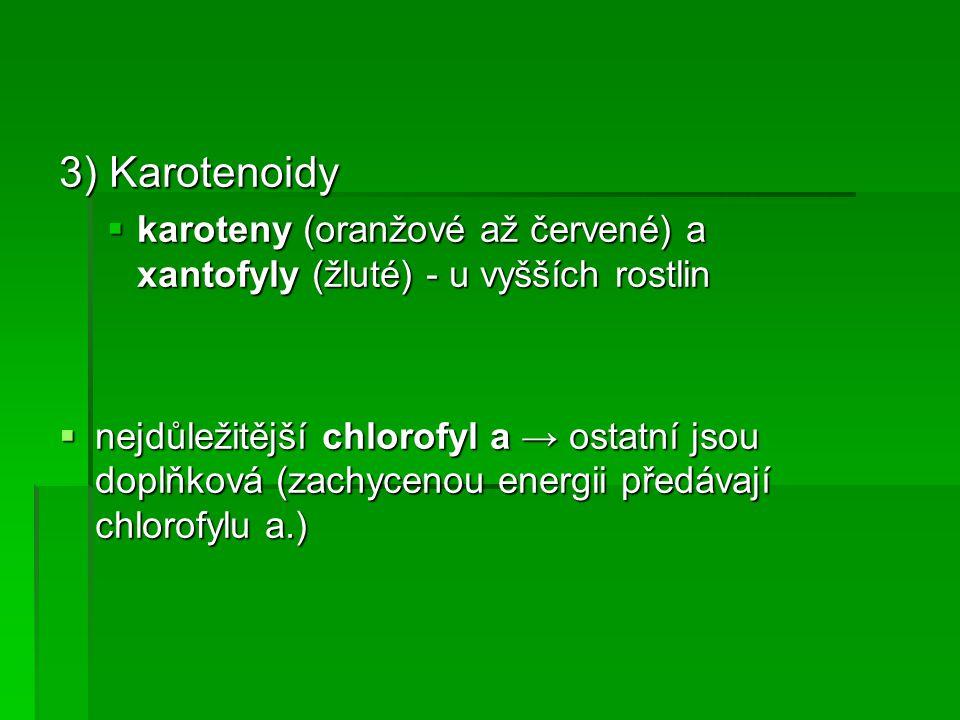3) Karotenoidy karoteny (oranžové až červené) a xantofyly (žluté) - u vyšších rostlin.