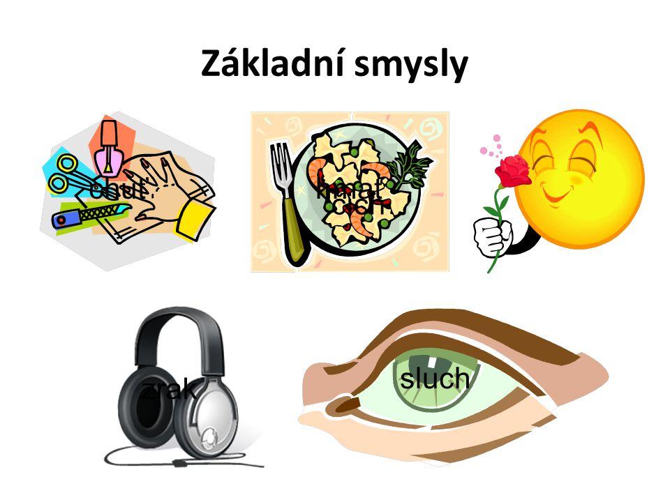 Základní smysly chuť hmat čich sluch zrak