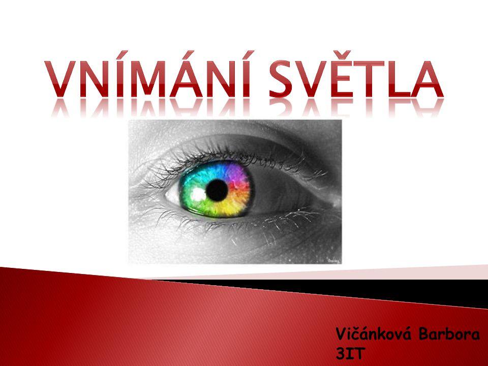 Vnímání světla Vičánková Barbora 3IT