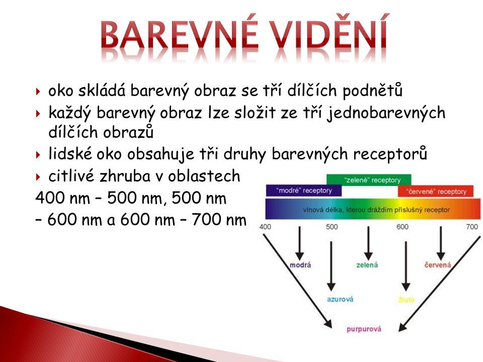 Barevné vidění oko skládá barevný obraz se tří dílčích podnětů