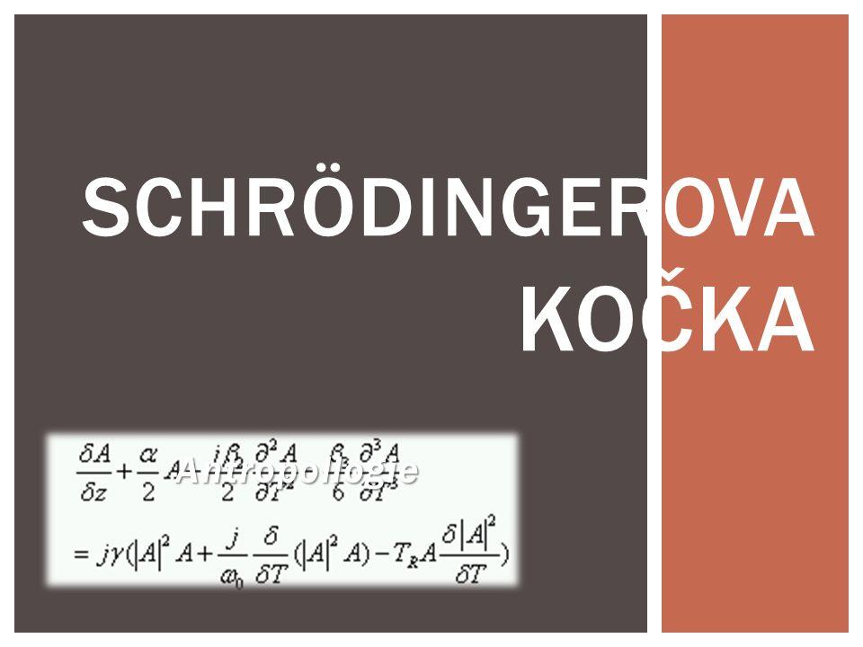 Schrödingerova kočka Antropollogie