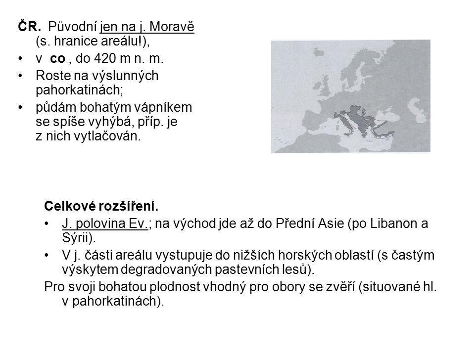 ČR. Původní jen na j. Moravě (s. hranice areálu!),