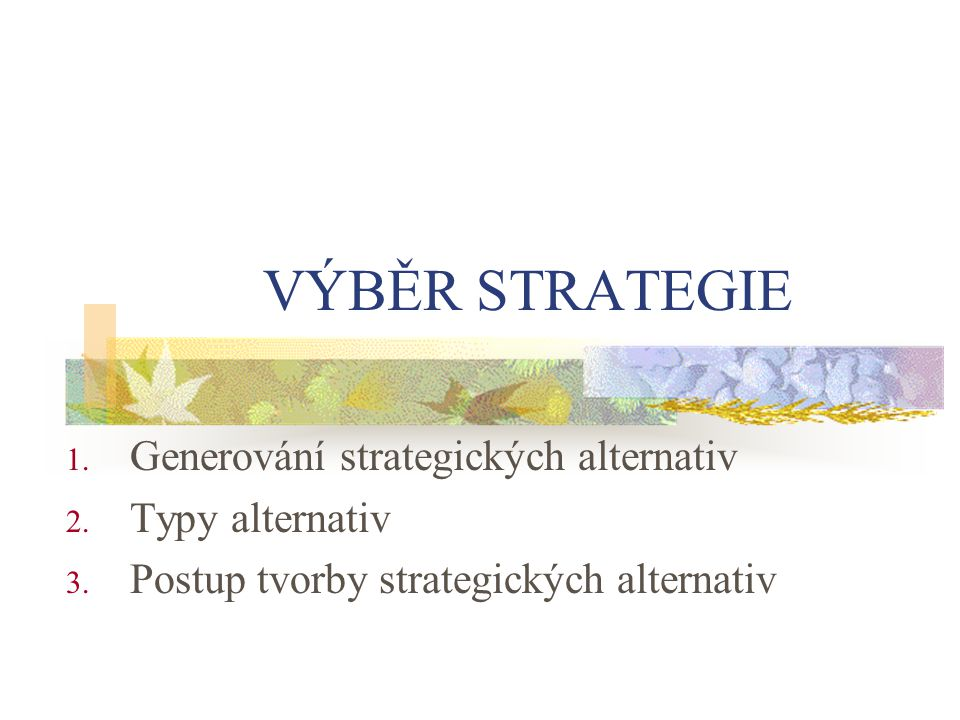 VÝBĚR STRATEGIE Generování strategických alternativ Typy alternativ