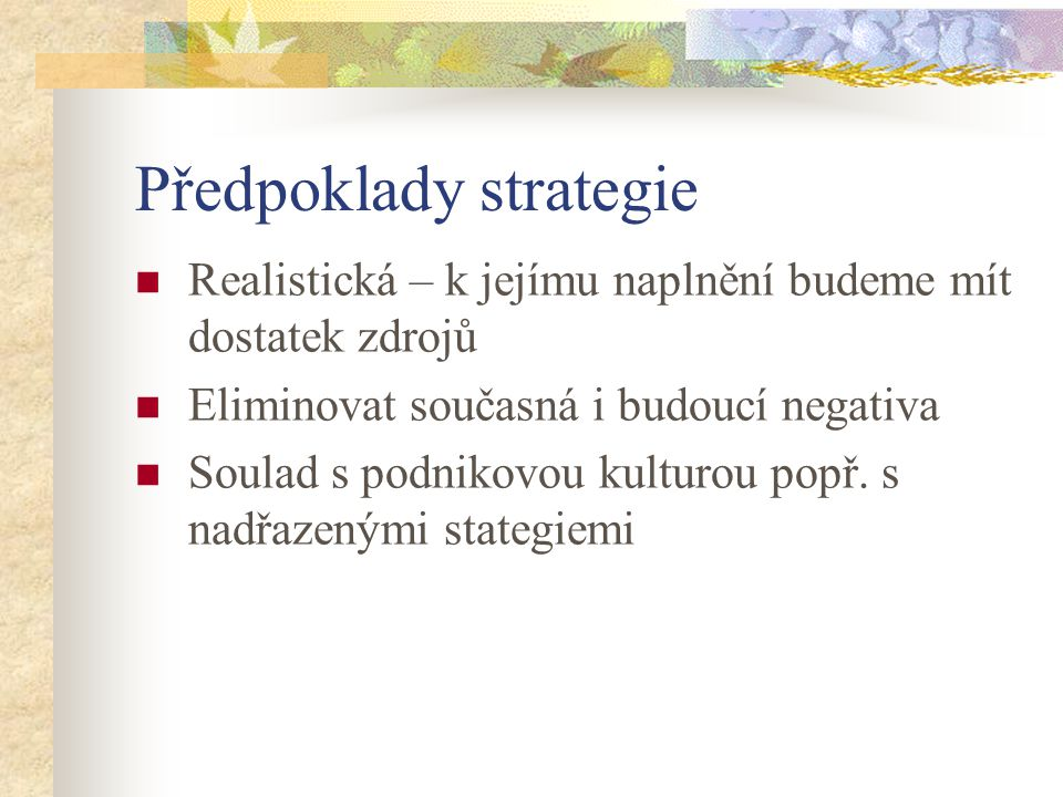 Předpoklady strategie