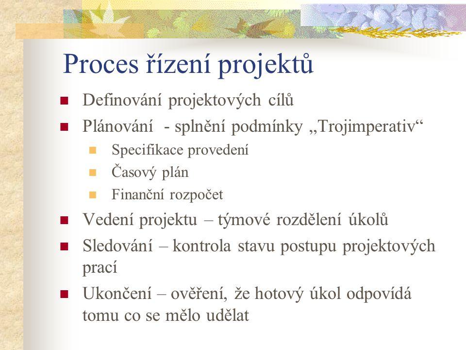 Proces řízení projektů