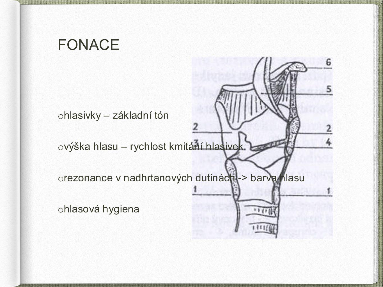 FONACE hlasivky – základní tón výška hlasu – rychlost kmitání hlasivek