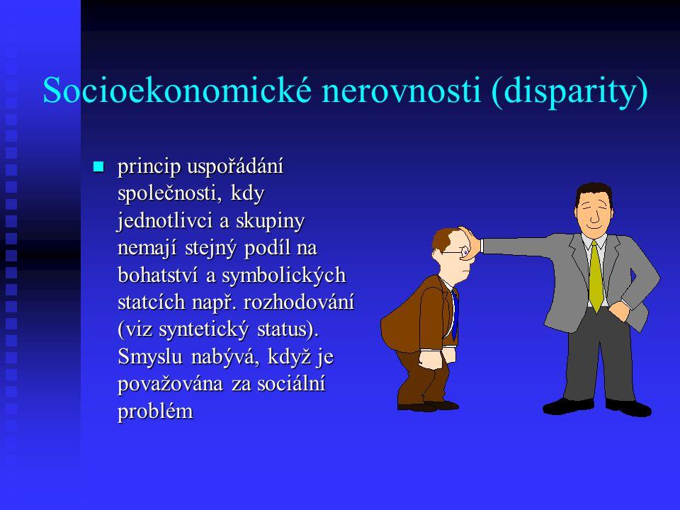 Socioekonomické nerovnosti (disparity)