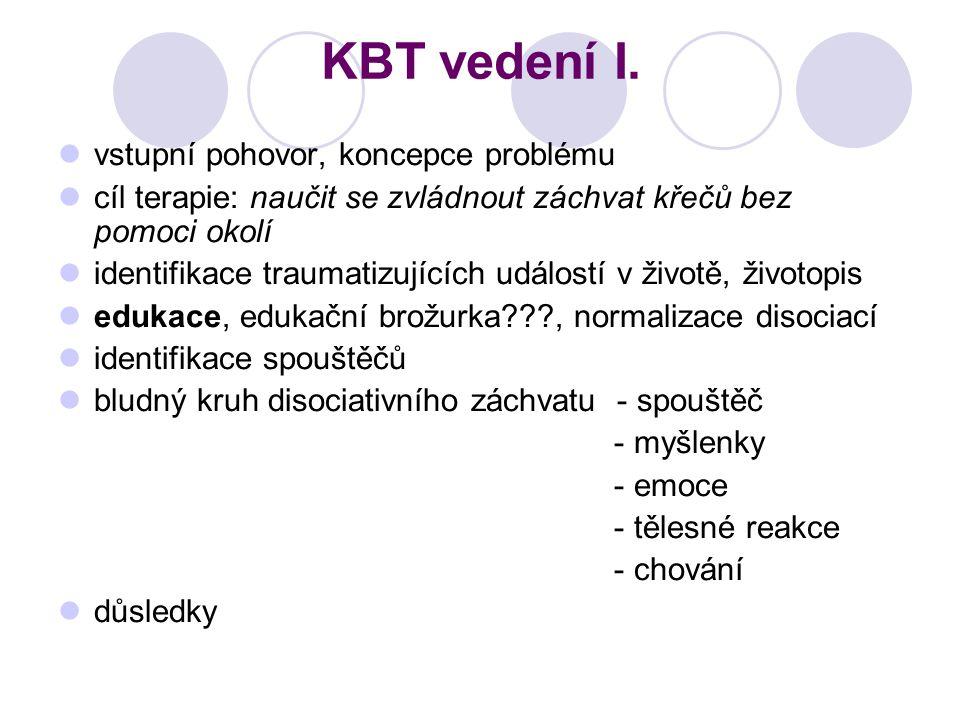 KBT vedení I. vstupní pohovor, koncepce problému