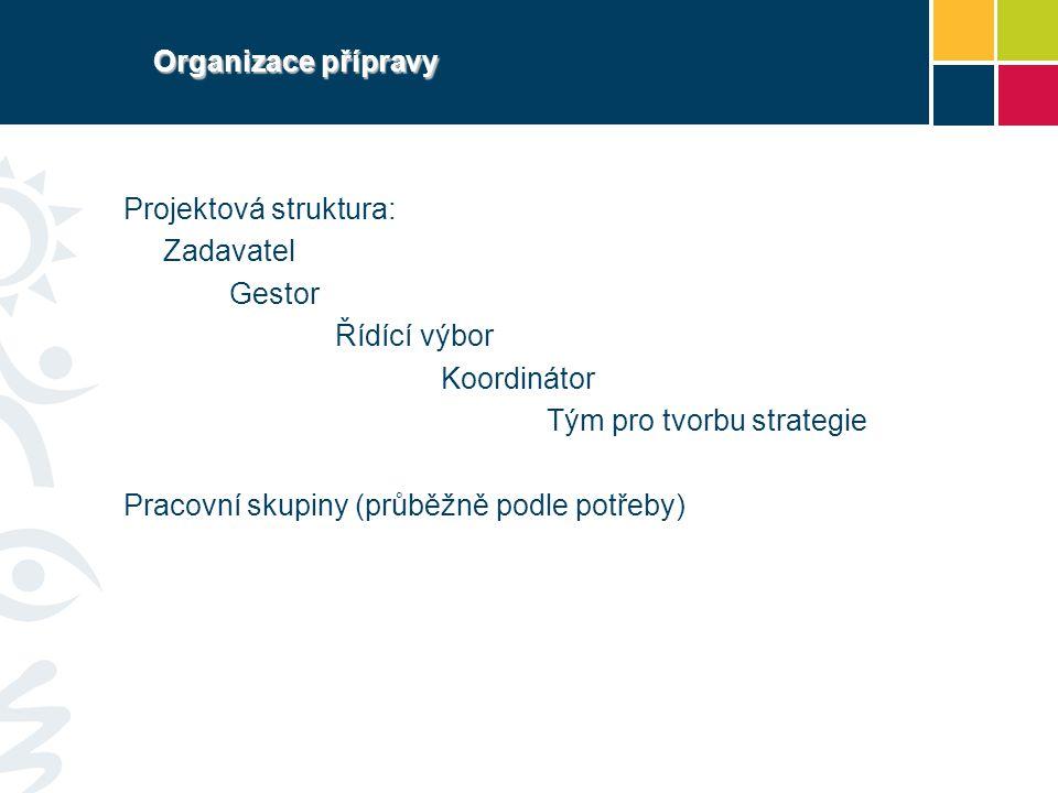 Organizace přípravy Projektová struktura: Zadavatel. Gestor. Řídící výbor. Koordinátor. Tým pro tvorbu strategie.