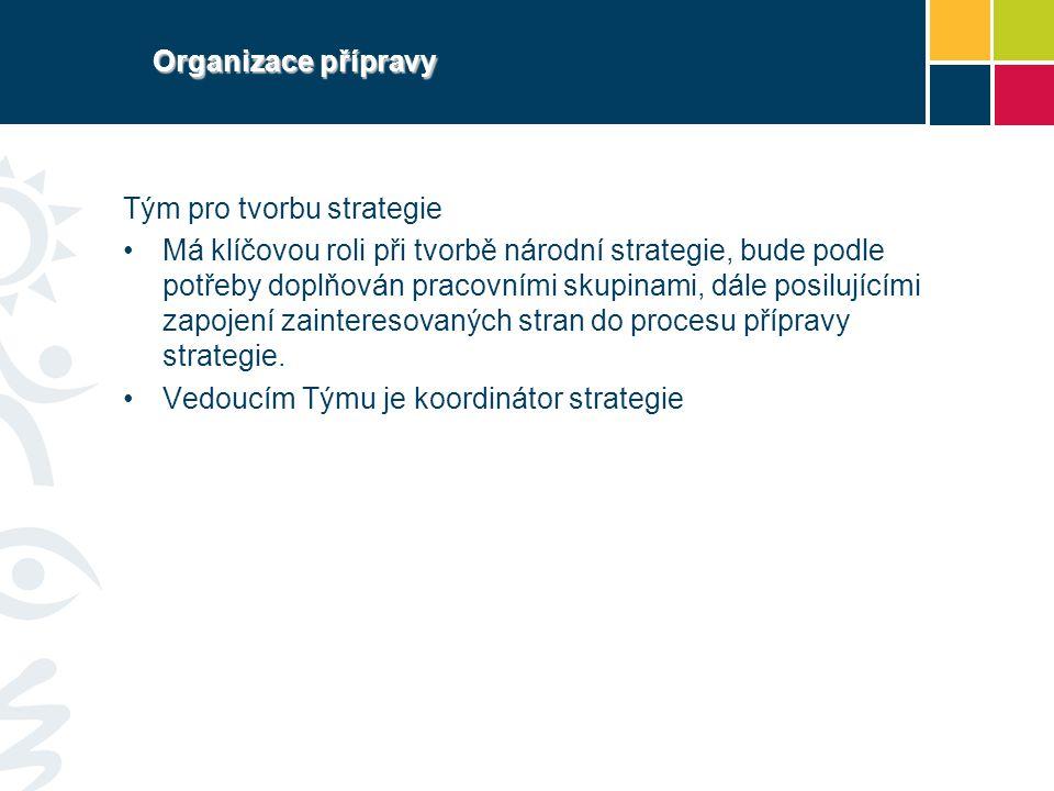 Organizace přípravy Tým pro tvorbu strategie.