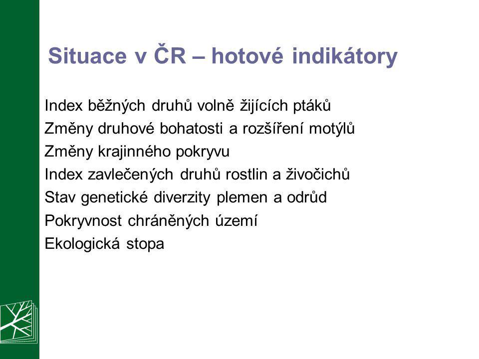 Situace v ČR – hotové indikátory
