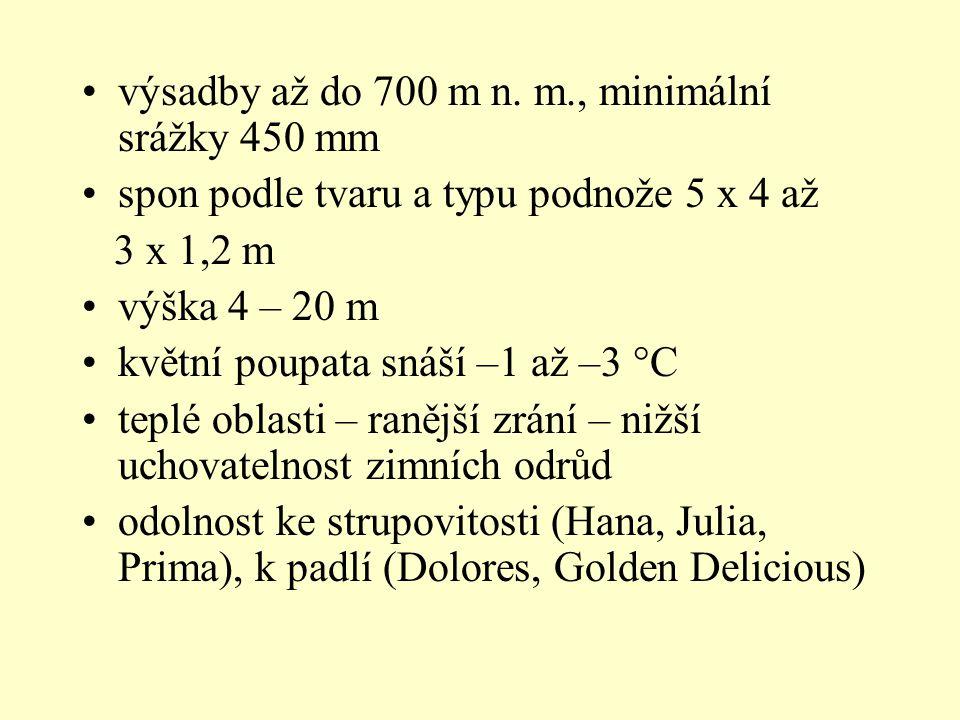 výsadby až do 700 m n. m., minimální srážky 450 mm