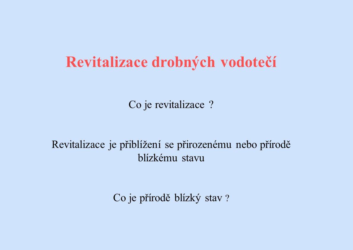 Revitalizace drobných vodotečí