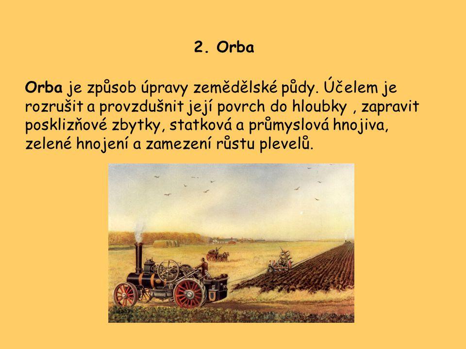 2. Orba