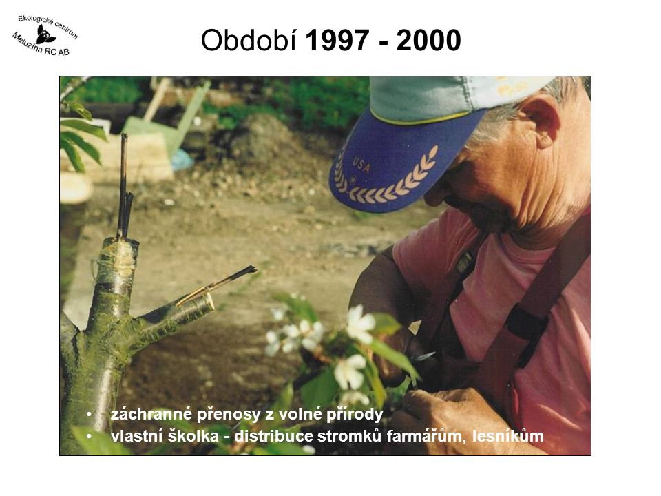 Období 1997 - 2000 záchranné přenosy z volné přírody