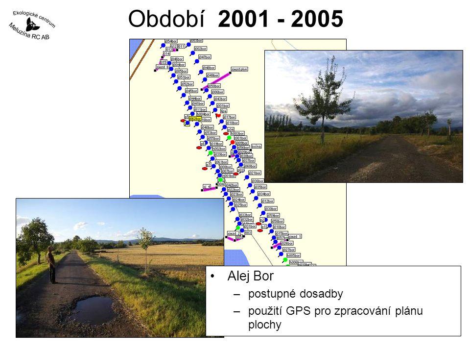 Období 2001 - 2005 Alej Bor postupné dosadby
