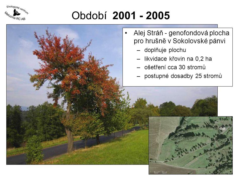 Období 2001 - 2005 Alej Stráň - genofondová plocha pro hrušně v Sokolovské pánvi. doplňuje plochu.